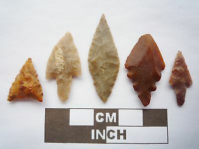 Neolithic Arrowheads x5, High Quality Selection of Styles - 4000BC - (Q105)