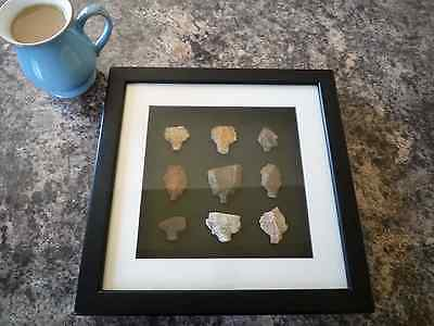 Paleolithic Arrowheads in 3D Picture Frame, Authentic Artifacts 70,000BC (O010)