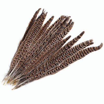20 Pack Natural Pheasant Tail Feathers 10-12 Inch Long DIY Craft Party