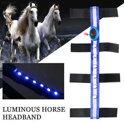 83BF Horse Reins Horse Head Straps Polyester LED Horse Accessory Durable Blue