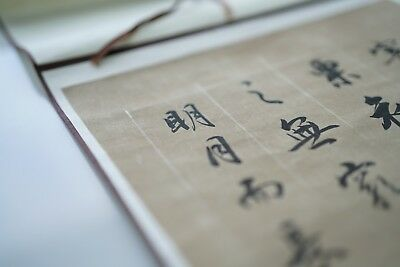 100% Original Chinese Ink Calligraphy Fine Art Scroll Signed & Sealed hand made