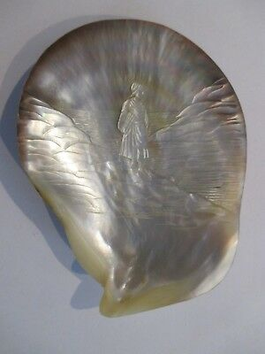 Antique Victorian Era Hand Carved Mother Of Pearl Sea Shell Circa 1850-1900 Rare