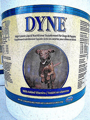 DYNE High Calorie Supplement for Dogs 1 Gallon Liquid Syrup Vanilla PET AG NEW