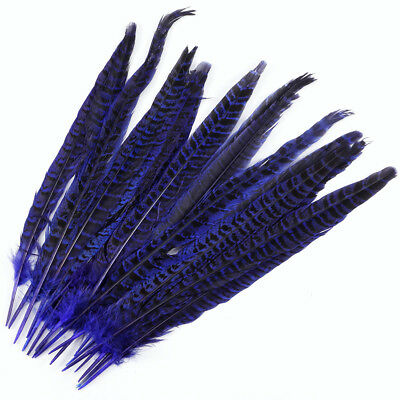 20 Pack Royal Blue Pheasant Tail Feathers 10-12 Inch Long DIY Craft  Party