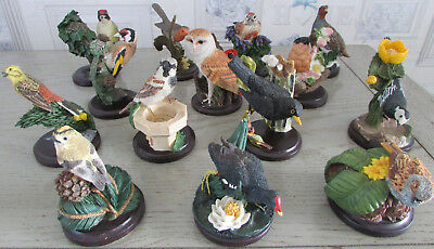 Lot de 14 oiseaux / birds The country bird collection by Andy Pearce TBE