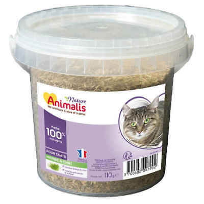 Herbe à Chat pour Chat - Animalis Nature - 110g