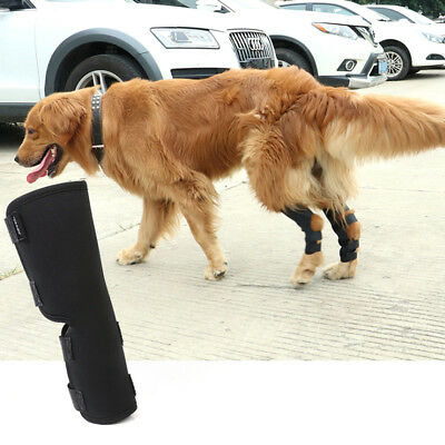 Knee Brace For Dogs Hock Protector ACL Therapeutic Dog Rear Leg Joint Bandage US