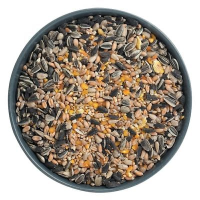Organic Nutrition Rich Garden Wild Bird Seed Food for Feeders and Bird Tables