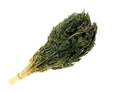 DIORAMA MATERIAL PRODUCT DRY GRASSES LEAVES. (bleach dark green color) TND-018