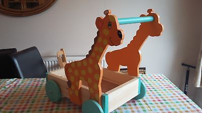 strong personalised baby walker