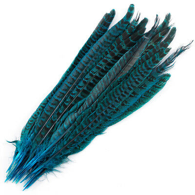 20 Pack Lake Blue Pheasant Tail Feathers 10-12 Inch Long DIY Craft Party