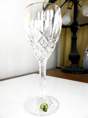 Waterford Crystal ARAGLIN PLATINUM Water Goblet / Glass - NEW!