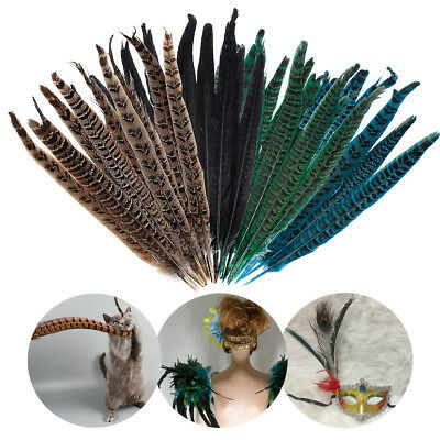 10 Pack Assorted Natural Pheasant Tail Feathers 25-30CM Long Costume Millinery