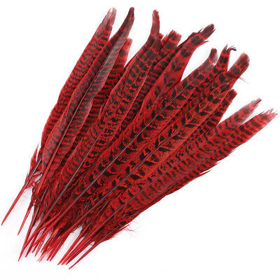 20 Pack Red Pheasant Tail Feathers 10-12 Inch Long DIY Craft Party