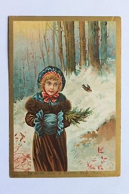 Victorian card TO WISH YOU A HAPPY NEW YEAR, S. Hildesheimer & Co. poem