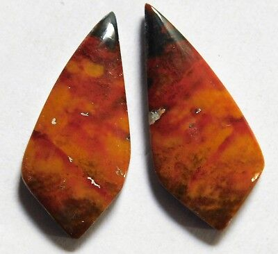 19.50Cts Natural Blood Stone (29.1mm X12.5mm each) Loose Cabochon Match Pair