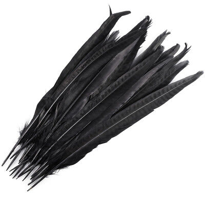 20 Pack Black Pheasant Tail Feathers 10-12 Inch Long DIY Craft Party
