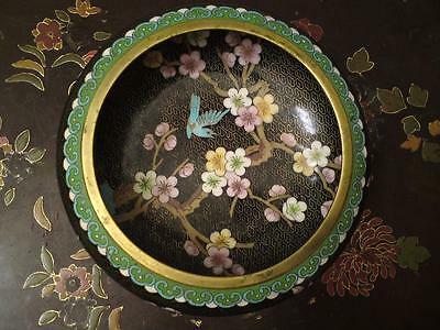 Large Perfect Republic Chinese Cloisonne enamel bowl Scholar brush washer
