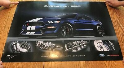 2018 Shelby GT350 Posters - Shelby Posters - Mustang Posters