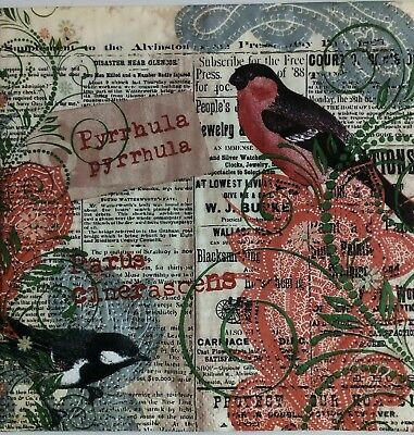 4x Paper Napkins  Birds For Decoupage Craft.Servilletas  papel decoupage pajaros