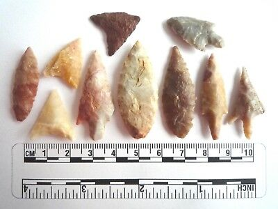 Neolithic Arrowheads x 10, High Quality Selection of Styles - 4000BC - (2452)