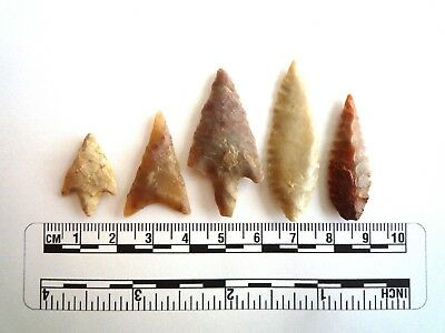 Neolithic Arrowheads x 5, High Quality Selection of Styles - 4000BC - (2445)