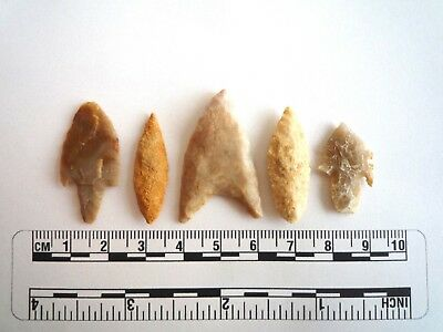 Neolithic Arrowheads x 5, High Quality Selection of Styles - 4000BC - (2424)