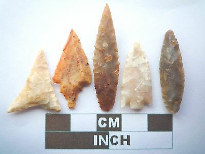 Neolithic Arrowheads x5, High Quality Selection of Styles - 4000BC - (X069)