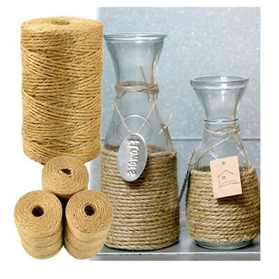 3Ply 100m Natural Brown Soft Jute Rope Twine Sisal String For Art Gift Bottle VW