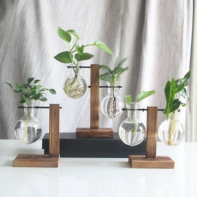 Vintage Style Hanging Glass Hydroponic Flower Vase Planter Pot With Wooden Tray