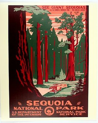 Sequoia National Park Service Vintage Federal Art WPA Style Travel Poster