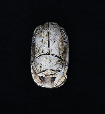 Ancient Egyptian Scarab Antique Carved Stone Rare Amulet!!