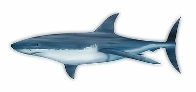 Great White Shark Carved painted from large Palm Tree Frond nautical art sharks