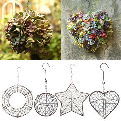 Hanging Planters Flower Pot Iron Wall Succulent Planters Rustic Plant Holder