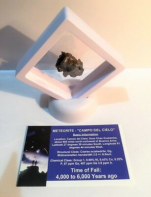 """""""RARE"""" 17.9 Gram Meteorite """"Campo Del Cielo"""" Museum Quality with stand and Cert"""