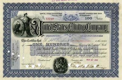 1899 United States Mining Stock Certificate
