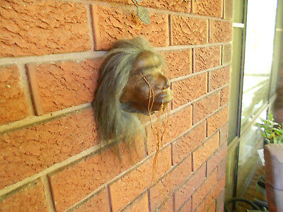 Taxidermy art shrunken head  real Llama skin full head  specimen hotrod hot rod