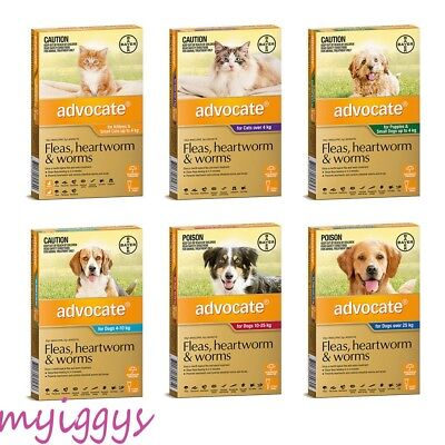 Advocate for Dogs  & Cats 0-4 kg, 4-10 kg, 10-25 kg, Over 25 kg 1 Tube SINGLE