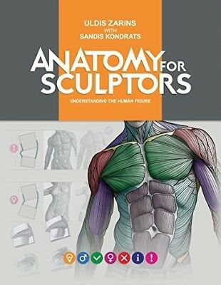 Anatomy for Sculptors Understanding the Human Form.