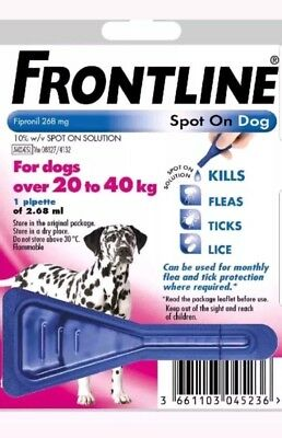 Frontline Spot On Flea Large Dogs 20kg-40kg 1 pipette AVM-GSL (Exp:01/2021)