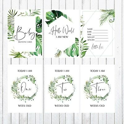 Baby Milestone Cards, 4x6 Photo Prop, 32 Cards, green, leaves