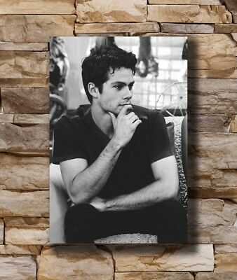 Dylan O Brien Actor Star Art Hot 12x18 24x36in FABRIC Poster N3749