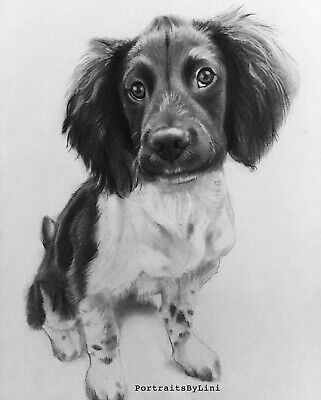 Custom Pet Portrait A4 Pencil Drawing Gift For Her, Him, Christmas Gift Birthday