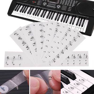 Transparent Piano Keyboard Sticker Music Keyboard Note Labels 54 61 88 Keyboards