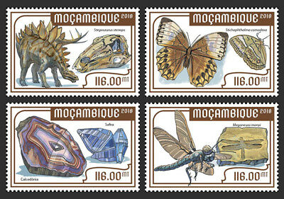 Z08 MOZ18201a Mozambique 2018 Museum in Berlin MNH Mint