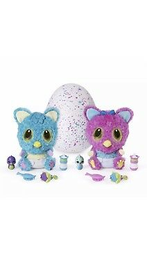 hatchimals hatchibabies koalabee - Boy Or Girl?