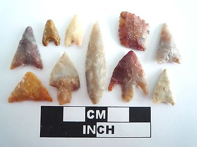 Neolithic Arrowheads x 10, High Quality Selection of Styles - 4000BC - (0385)