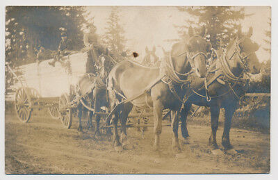 RPPC Logging Lumber Horse Cart Wagon Mill Delivery Transportation Real Photo