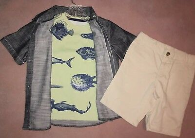 Crazy 8 a Gymboree co Green Fish Tee Chambray shirt khaki shorts 5T (3pc)