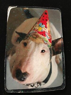 """English Bull terrier Dog Coaster Resin Paperweight 5"""" Spuds Happy Birthday"""